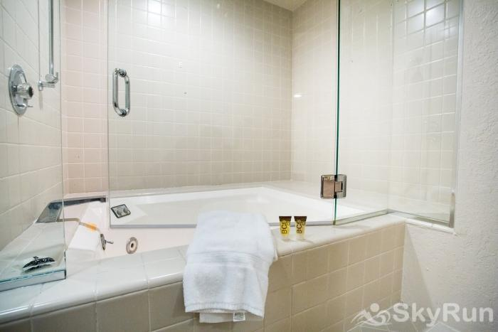 711 Spruce St. 6BR Master Bathroom Jacuzzi
